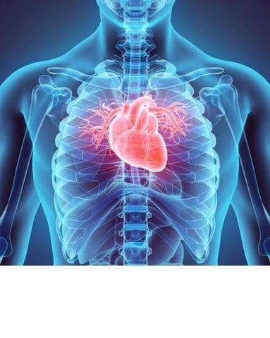 NextGen Office Cardiology